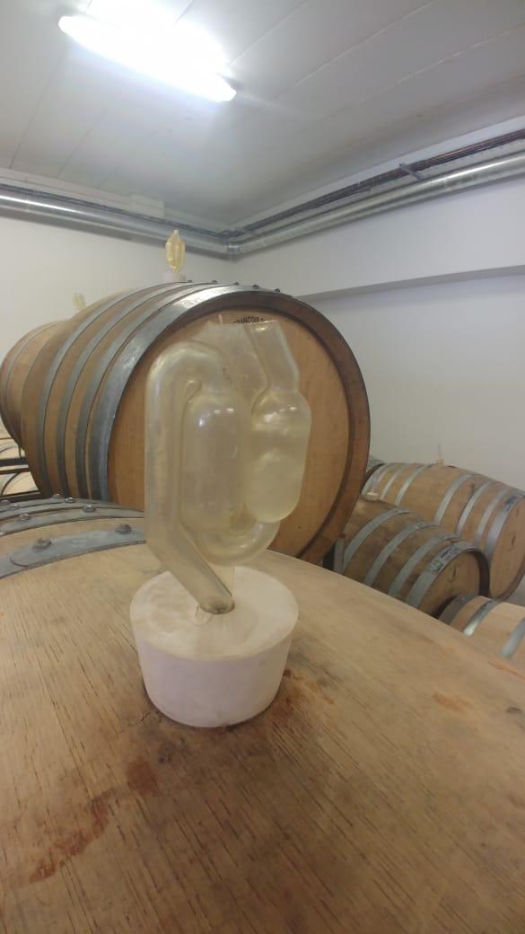 Proces-metoda  de fermentare